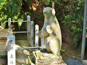 レアな狛ねずみがいる!京都「大豊神社」を子年にお参りしよう