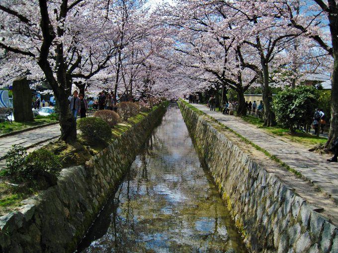 哲学の道にほど近い大豊神社
