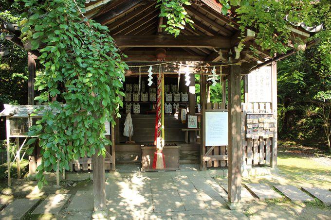 大豊神社とその歴史