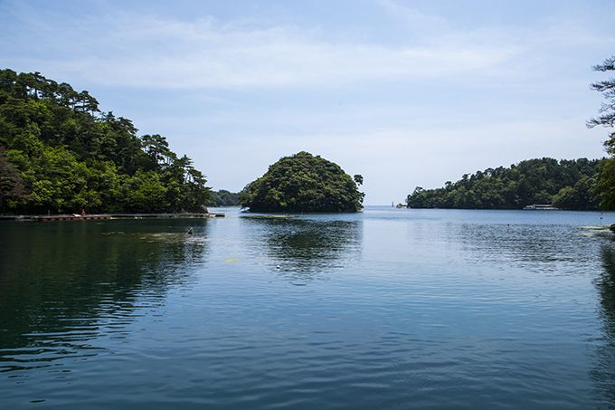 九十九湾に浮かぶ蓬莱島!生い茂る木々との景観が見所♪