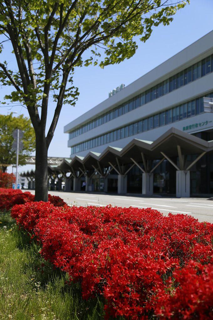 ゴールデンウィーク期間中は能登空港で「のとキリシマフェスティバル」を開催!