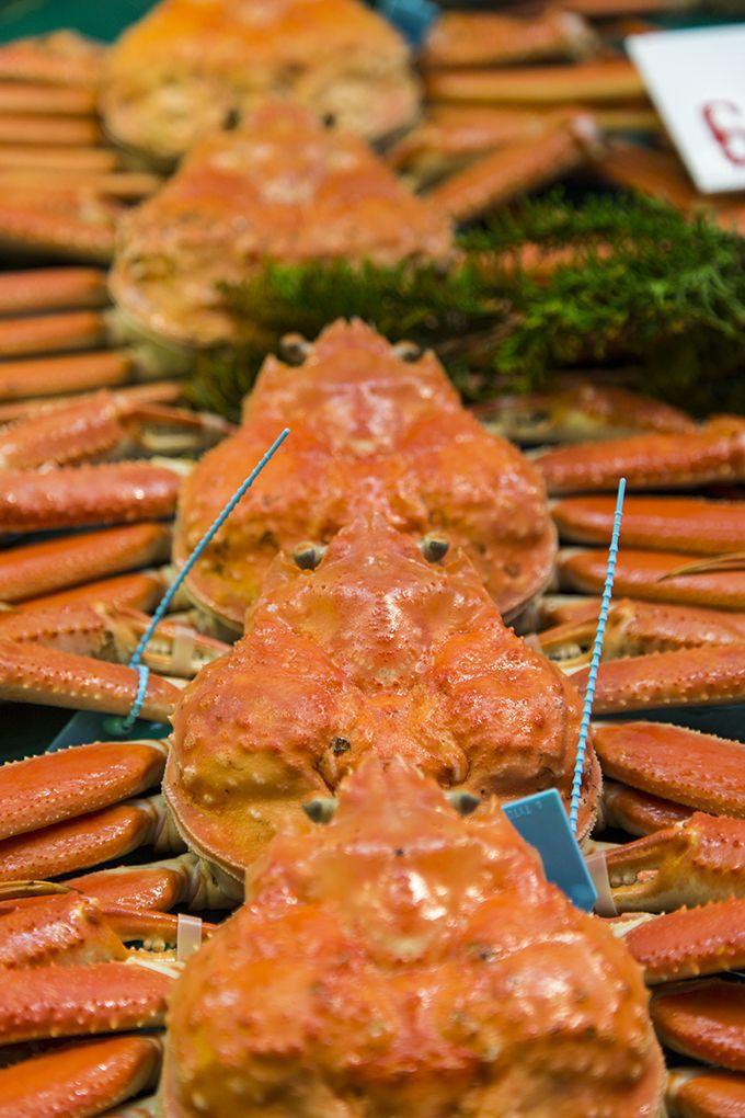新鮮な魚や野菜がならぶ金沢市民の台所、近江町市場!