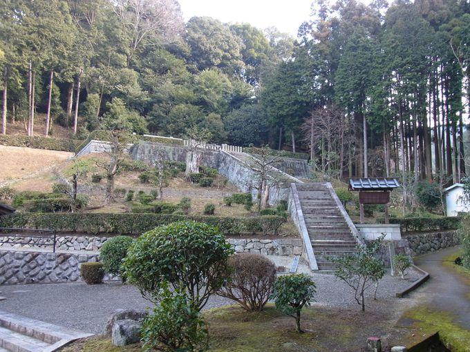 忍阪・奥の谷の秘密
