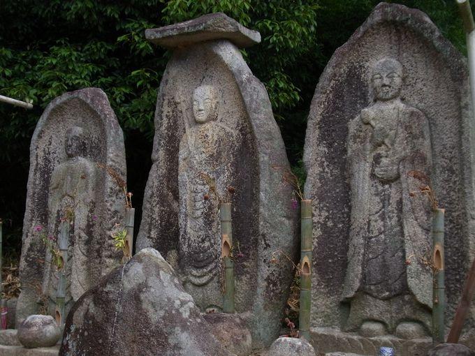 東大寺の影を落とす小菩提寺跡