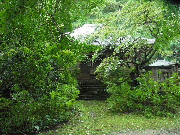 戒場薬師と親しまれてきた由緒ある戒長寺と戒場神社