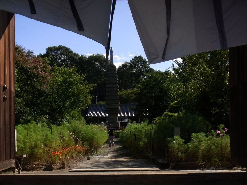 平城京の境を成す奈良坂の不思議な風景を楽しみましょう