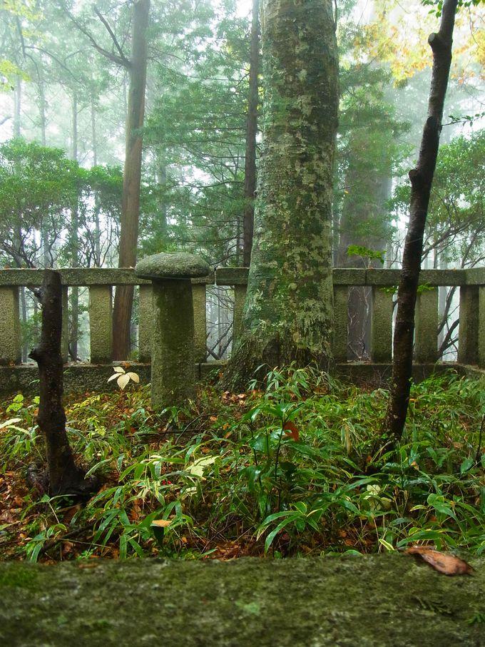 比叡山最大の魔所とされる元三大師御廟の墓石はなんときのこ形