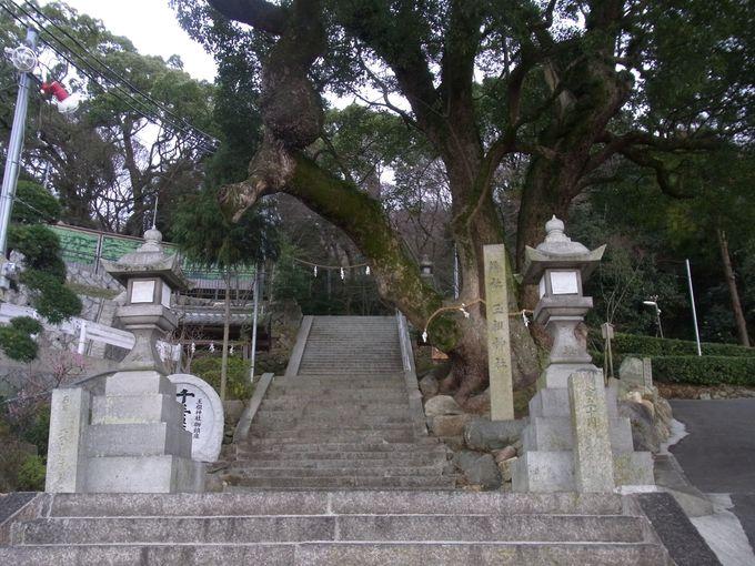 作玉部(たますり)の祖霊をまつる玉祖神社