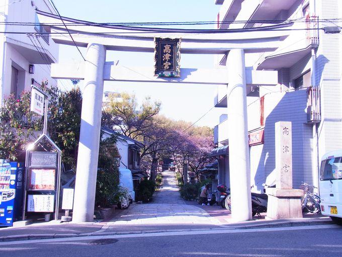 大坂町人の文化の中心として賑わってきた高津宮