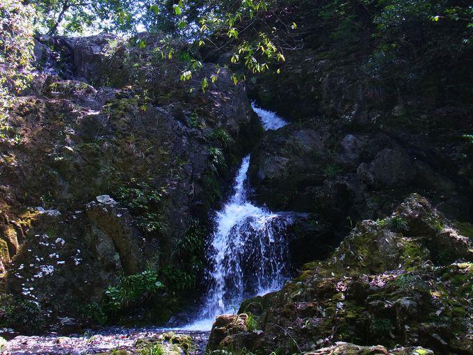 伽藍に躍動感をもたらすつくばねの滝