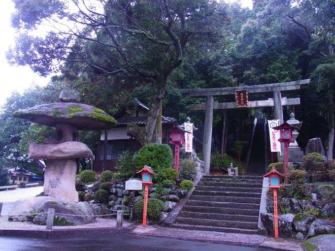 お水取りに深い縁をかんじさせる鵜を祀る神社