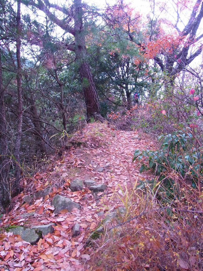 有馬三山ならぬ有馬六山巡りは、まさに秘境の山旅