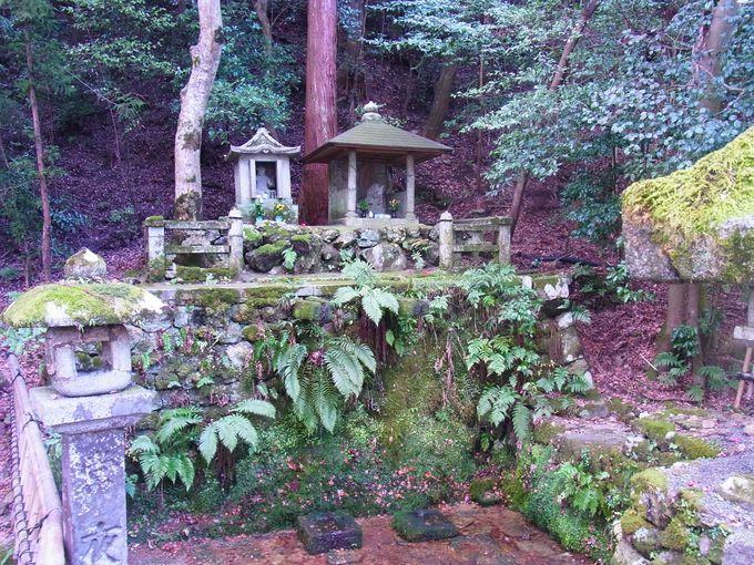 神仏無き時代を生き抜く大雲寺とその跡地に癒しの滝を訪ねて