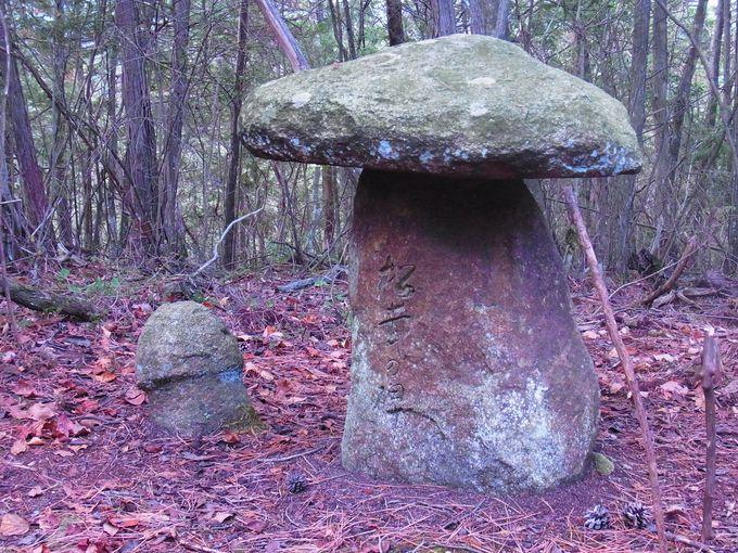 岩倉の尼吹山にある「まつたけの碑」