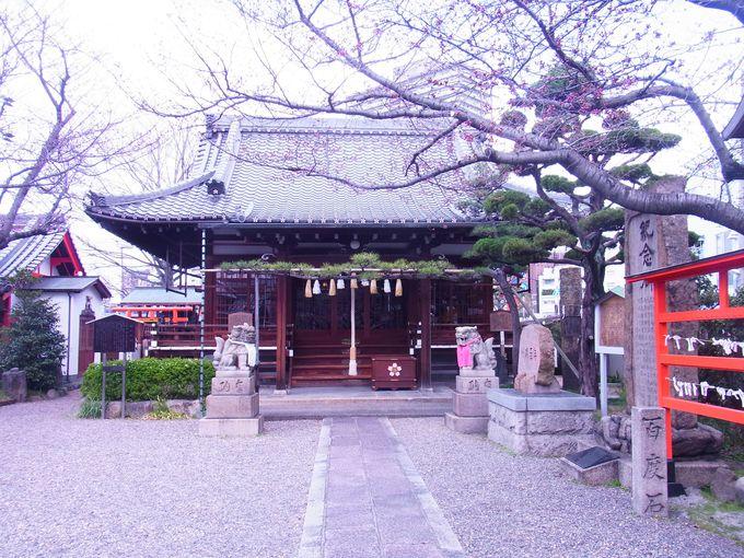 怨霊信仰の副産物の天満宮とは次元を異にする学問の神様・櫻井神社