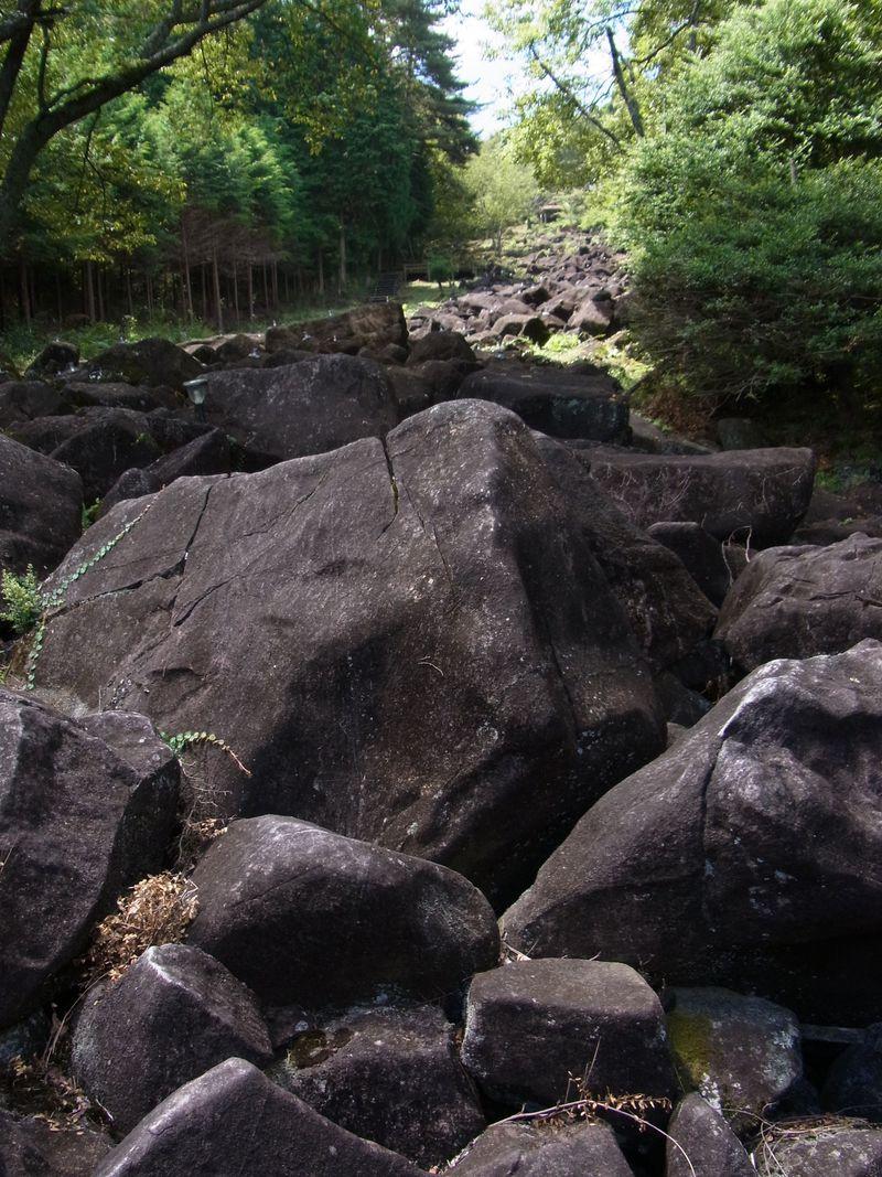 伊賀・大和を一望する大和高原のパワースポット「神野山」
