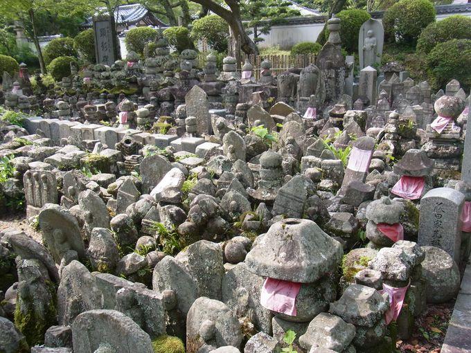 高野・比叡の血なまぐさい宗教戦争を今に伝える根来寺
