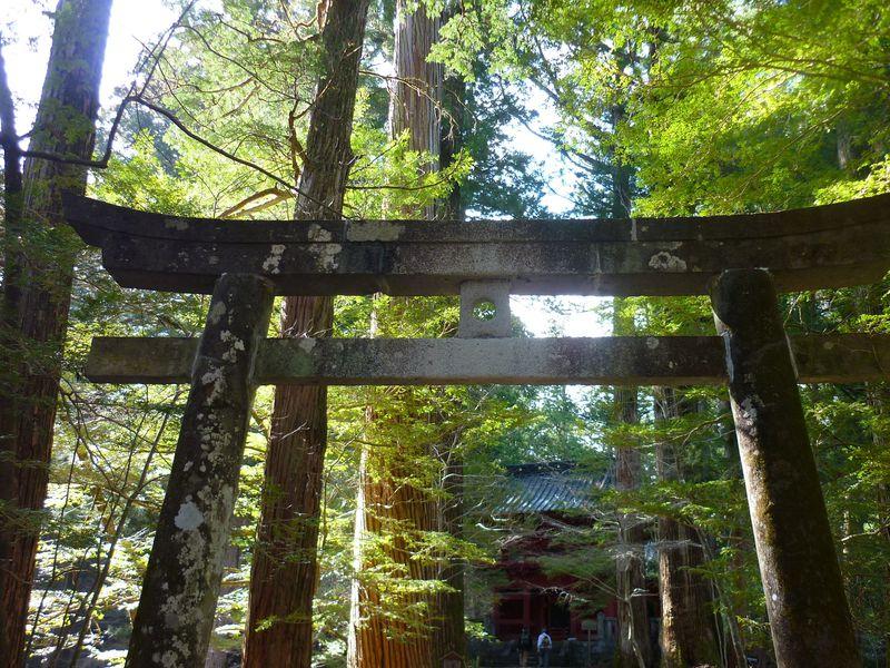いろんな伝説が眠る、日光の隠れ家的パワースポット!「滝尾神社」