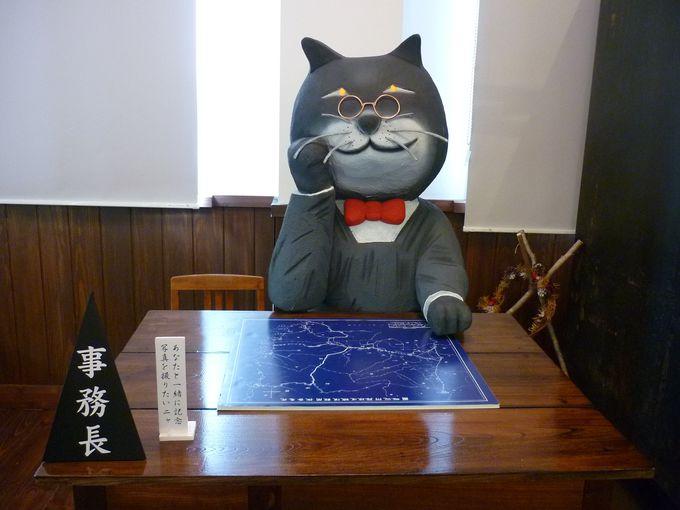 だぁすこ→猫の事務所