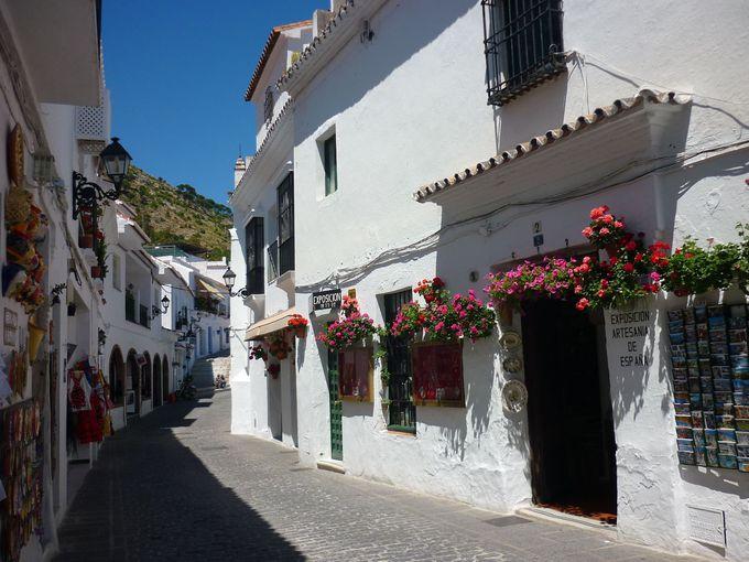 白い壁を飾る花壇