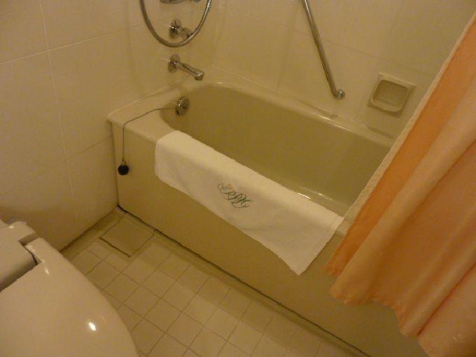 ロイヤルパークホテルのフィットネスクラブがオアシスすぎる!