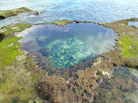 奄美大島旅行のおすすめプランは?格安、女子旅、家族旅行などテーマ別に紹介!