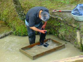 泥で染める!本場奄美大島紬の工程を「大島紬村」で学ぼう