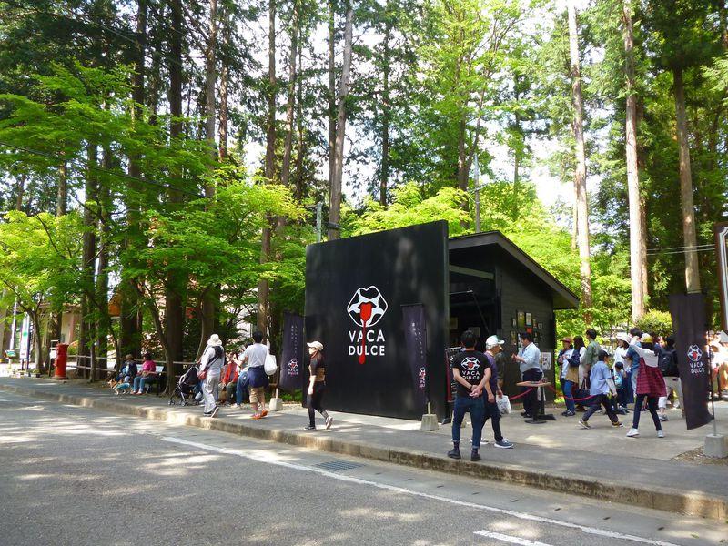 森の中に黒を基調とした「VACA・DULCE(バカ・ドルセ)」登場!