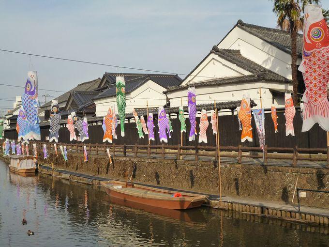 蔵の街遊覧船 春の風物詩「うずまの鯉のぼり」