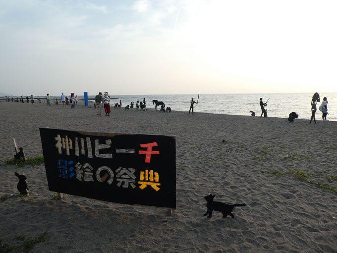 錦江町の「神川ビーチ 影絵の祭典」