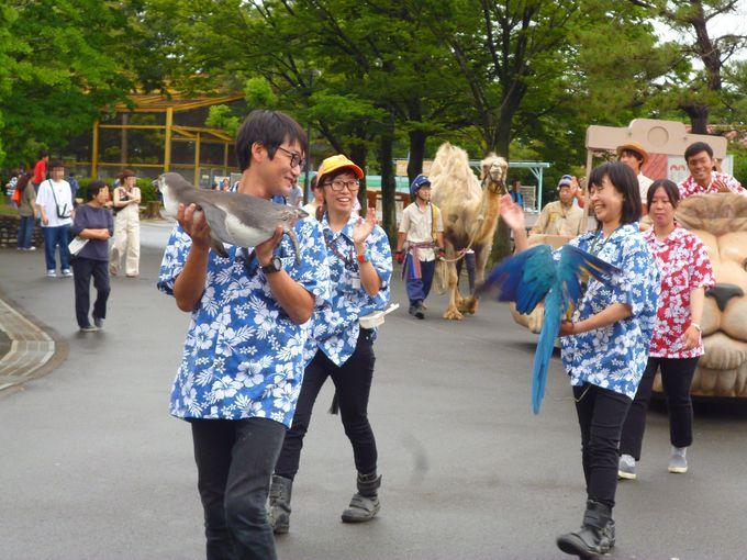 人気NO.1イベント「ふれあい動物パレード」