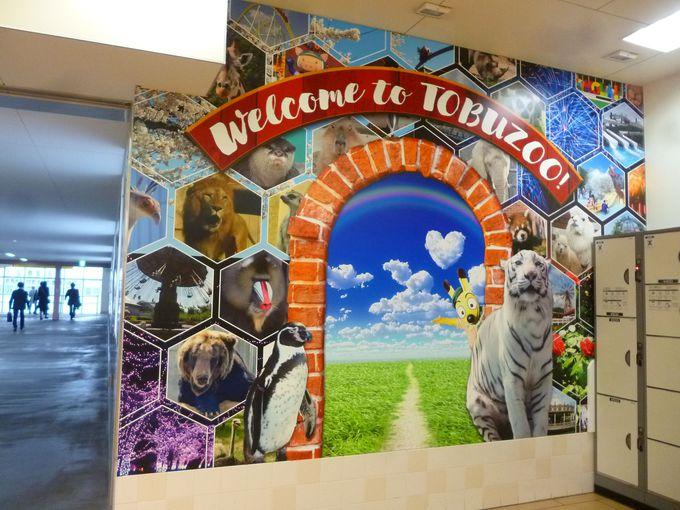 東武動物公園へのアクセスと2019年のイベント
