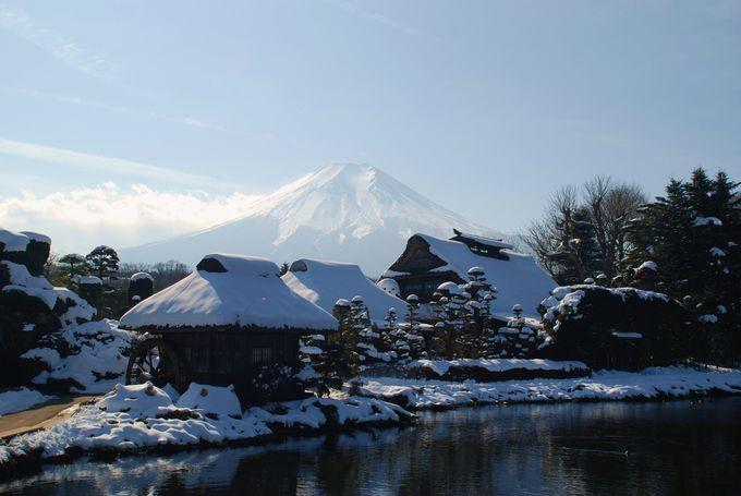 雪景色と富士山!忍野八海!