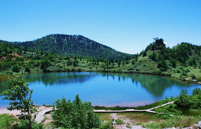 のんびり散策したい!湯釜と正反対な静寂の湖「弓池」