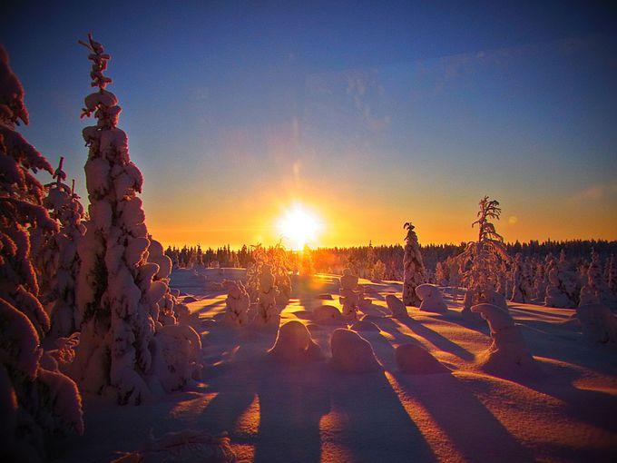 オーロラだけじゃない!雪と氷の美しい世界!