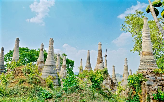 秘境感あふれる!木々に隠されたインディン遺跡