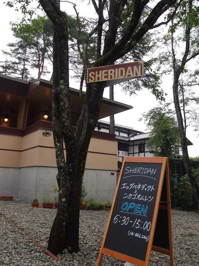 目印は「軽井沢上野美術館」の隣