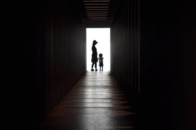 見事な明暗!長いトンネルの先に広がる絶景パノラマ