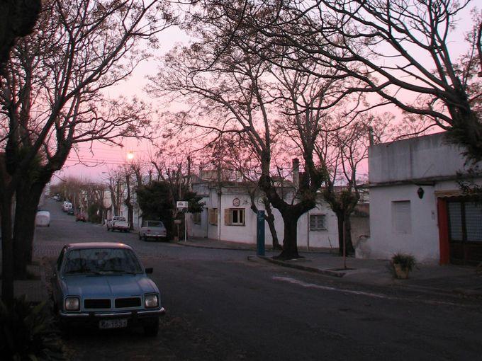 街全体がピンクに染まる、夕暮れ時のコロニア