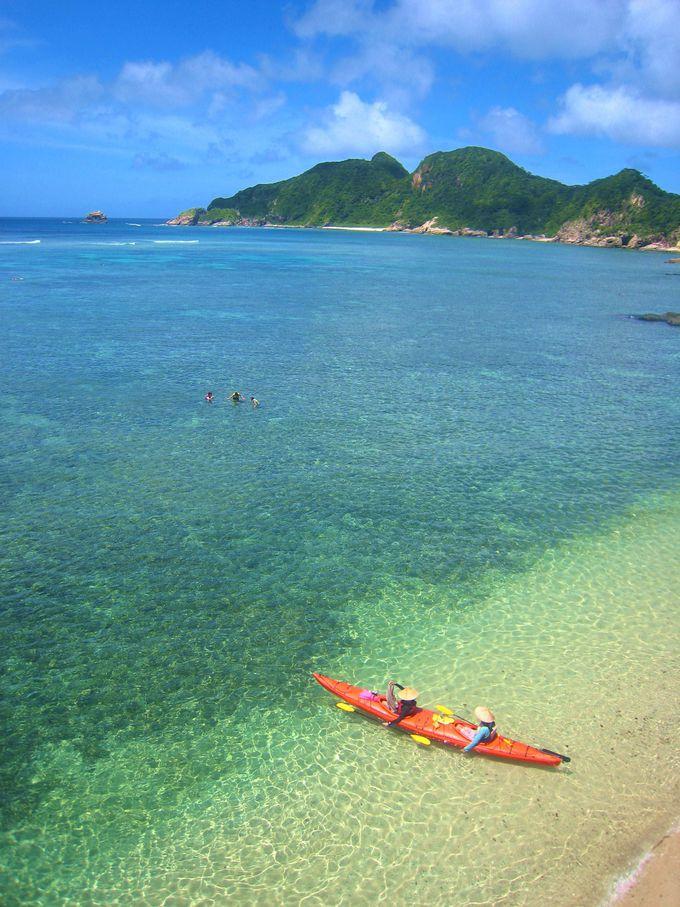 2.ウミガメと泳ぎたい人はここ!沖縄「座間味島」