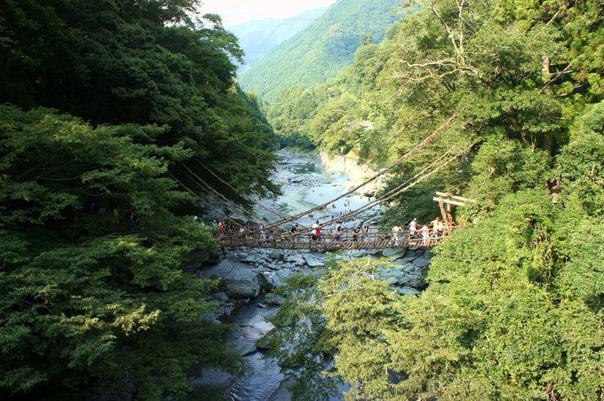 日本三大秘境の一つ「祖谷のかずら橋」でスリル体験!