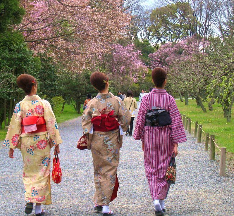 女子旅に!着物姿で入館料無料!?レンタル着物で京都さんぽ