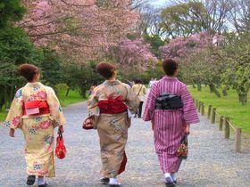 京都で体験!旅ナカアクティビティ11選 着物に川下り、忍者体験も
