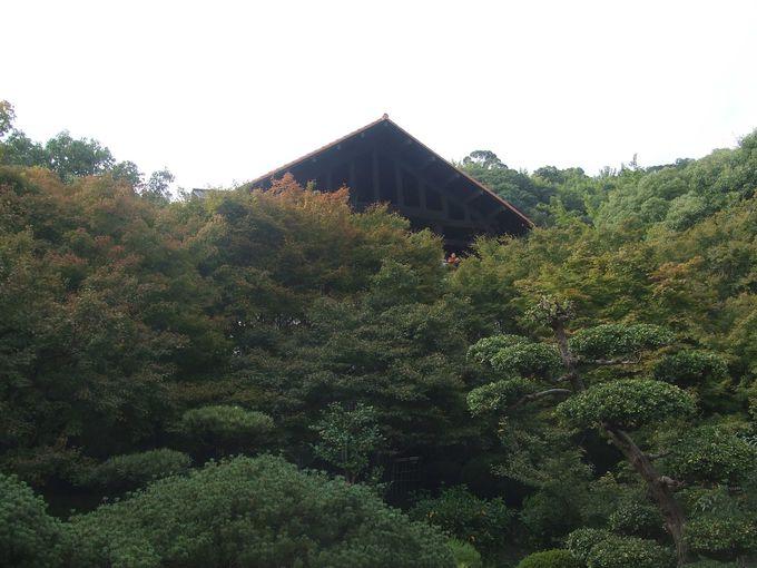 桂川、木津川、宇治川を見渡す絶景のテラスでお茶を。