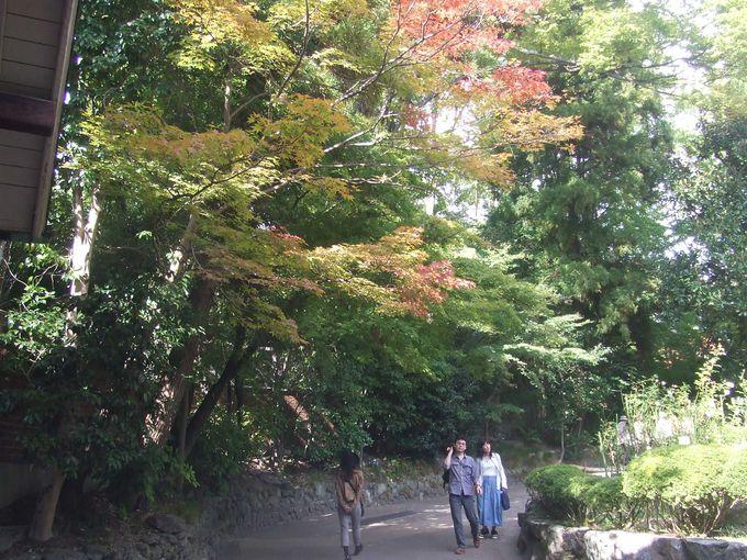 ロマンチストの実業家が思いを託した美しい山荘と庭園。