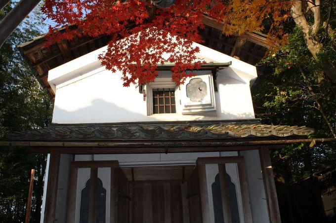 日本の李白がたくさんの詩を読んだ隠棲の地。