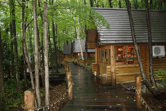 『北の国から』雪子おばさんの「森のろうそく屋」
