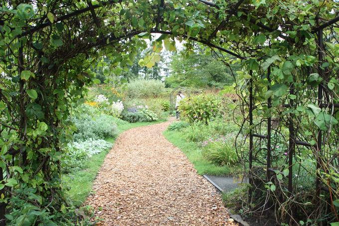 450種以上の花が育つ英国式の「風のガーデン」を散策