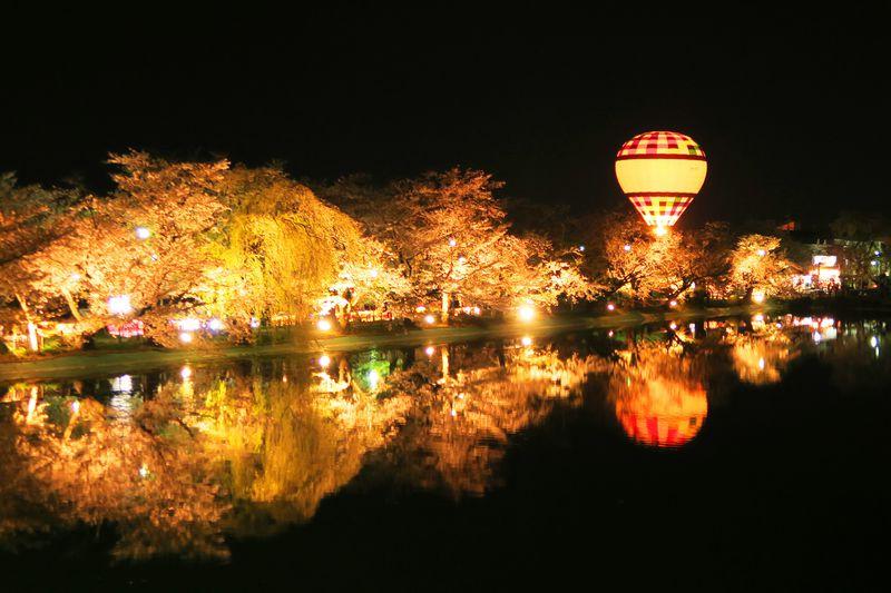 桜が池に映り込んで倍楽しい!長...