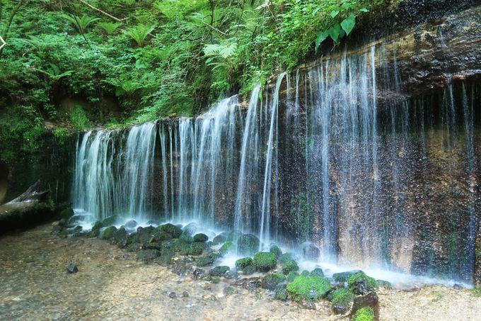 2.白糸の滝